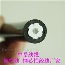 四川成都高低压导线 钢芯铝绞线 保检