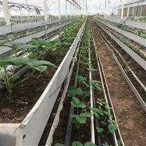 大型连栋温室 无土栽培 立体草莓种植大棚