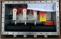 ZJJD不锈钢电缆接地箱防雷