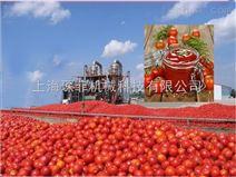 番茄酱高产加工生产线
