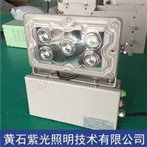 NFC9178免维护低顶灯,GAD605-J固态应急灯