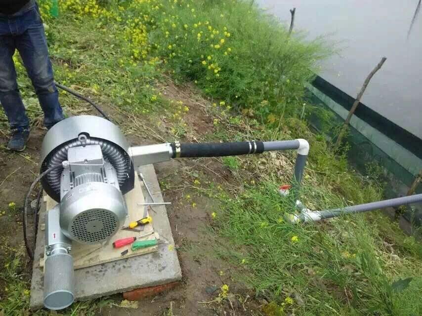 污水曝气风机,曝气鼓风机,纽瑞RH-710-3污水处理设备曝气高压鼓风机示例图2