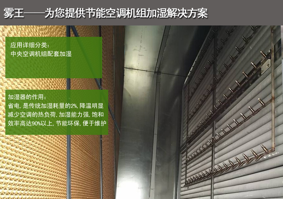 雾王提供空调机组加湿解决方案