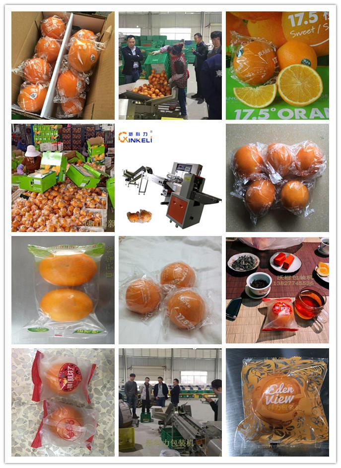 唐氏智能重庆脐橙包装机 奉节脐橙包装机 广东脐橙包装机生产厂家 国内专利水果自动包装机示例图4