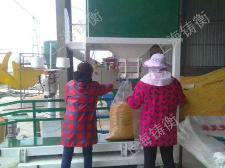 小麦计量包装秤