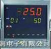 NHR-5400智能60段可编程PID调节器/温控器