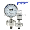 无锡/南京/Y-150B/FZ/GL/MZ 螺栓式隔膜压力表/防腐/耐震/