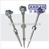 WRNN2-330 耐腐型耐磨型热电偶/说明书-厂家: